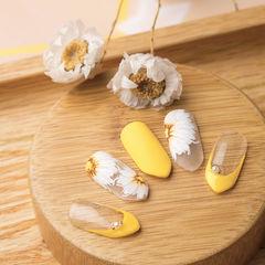圆形黄色白色手绘花朵法式研习社美甲帮研习社武汉校区学员作品,想学习这么好看的美甲吗?可以咨询微信mjbyxs6哦~美甲图片