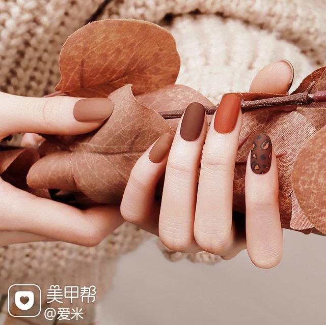 圆形棕色焦糖色手绘豹纹磨砂秋天美甲图片